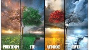 Printemps, été, automne et hiver